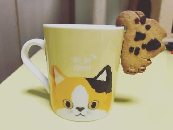 カップにぶらさがり猫